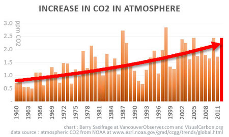increase in CO2 accelerating